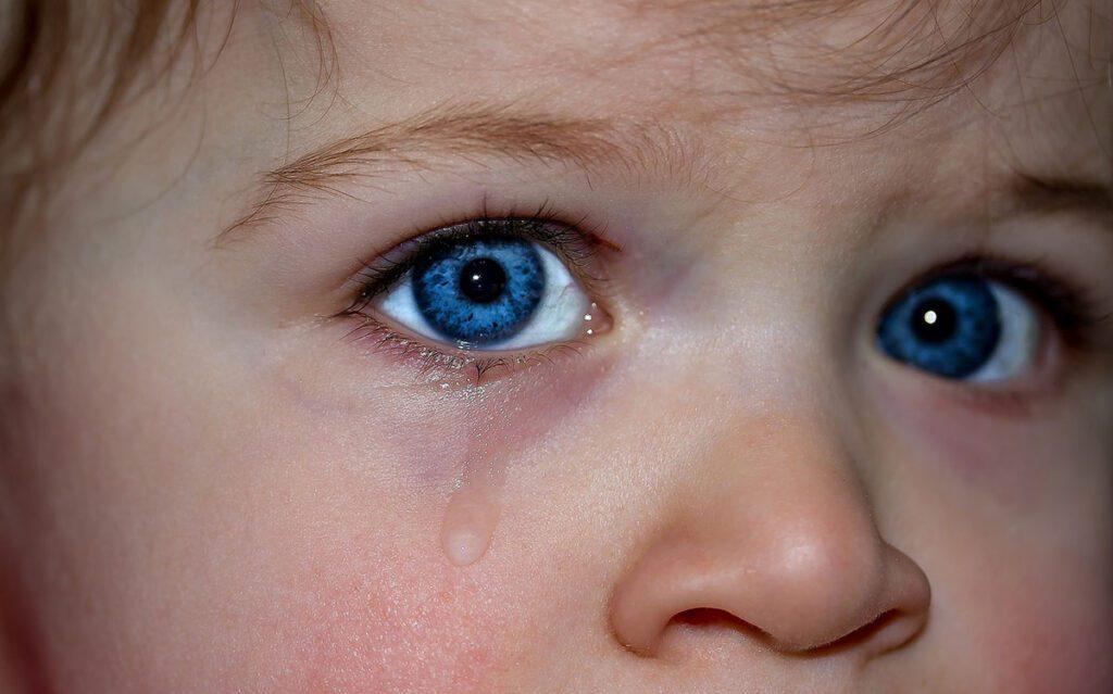 Las emociones básicas aparecen durante el primer año de vida.